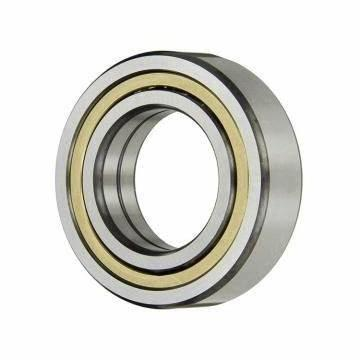SKF NSK NTN Snr Koyo Timken NACHI Customized Rubberized Bearing