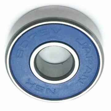 NSK/Koyo/NTN/F-a-G Deep Groove Ball Bearing 607 609 6201 6203 6205 6301 6303 6305 Machine Parts Bearing