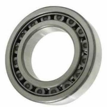 Chinese Manufactory of Cylindrical Roller Bearing (NJ 206 E)