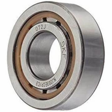 Nu/Nj/N/Nup/203 Motorcycle/Auto Parts Cylindrical Roller Bearing