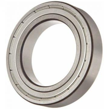 FAG Ball Bearings 6000 6001 6002 6003 6004 6005 6006 6007 6200 6022 6201 6202 6203 6204 6205 6210 6300 6301 6302 6406 ZZ 2RS